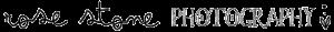 Rose Stone Photography Logo